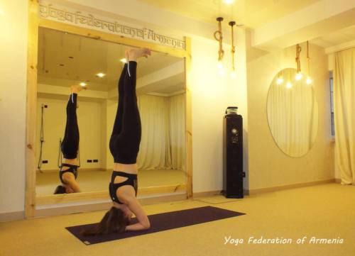 yoga federation 6